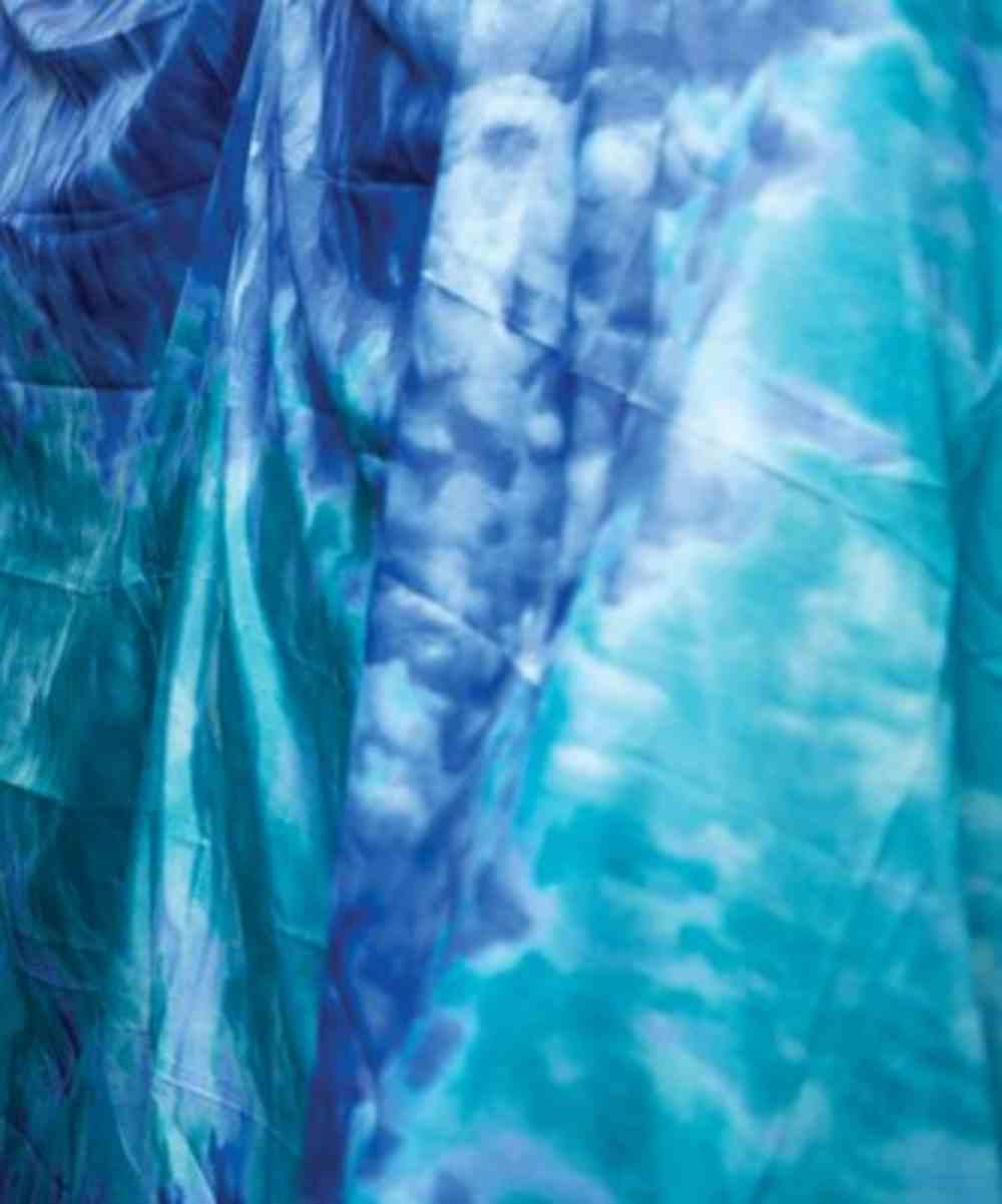 2019 Vbs Roar Water Fabric 5' X 10' Soft Goods