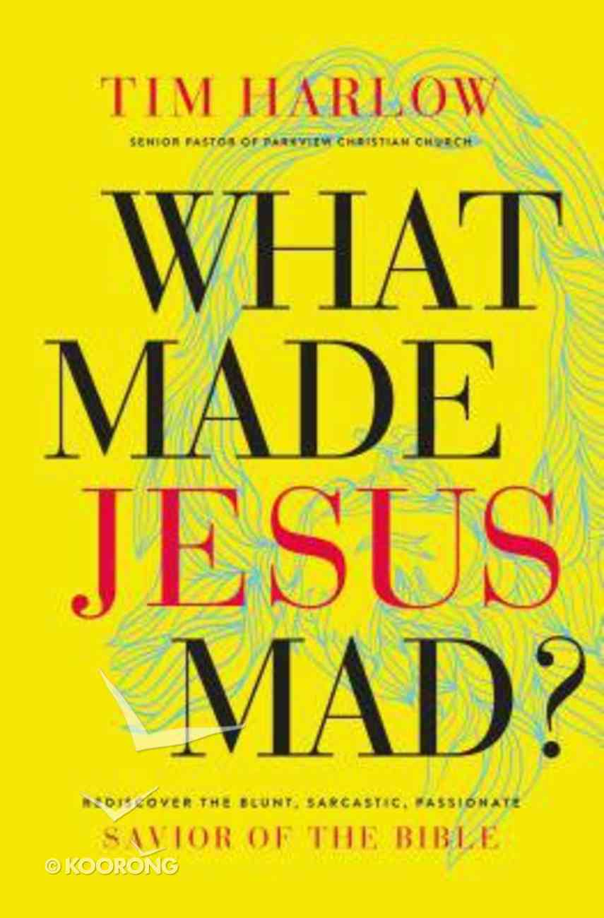 What Made Jesus Mad? eBook