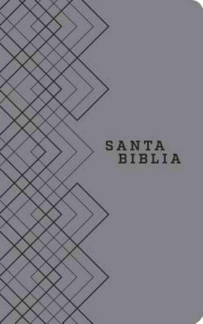 Ntv Santa Biblia Edicion Agape Gris (Black Letter Edition) Imitation Leather