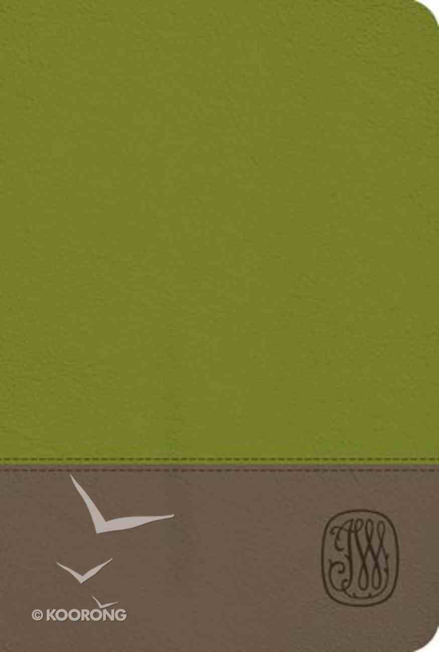 NRSV Wesley Study Bible Sage Thicket Imitation Leather