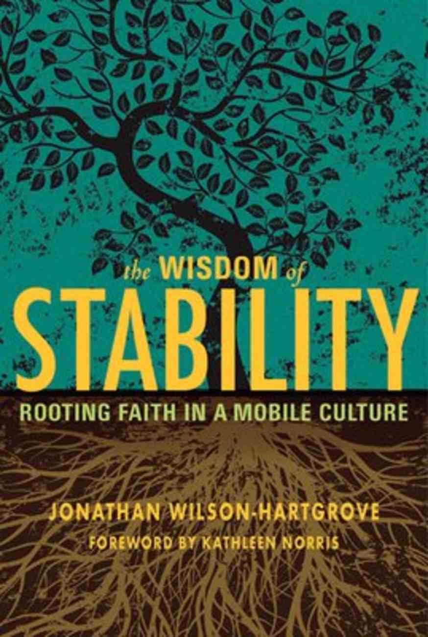 Wisdom of Stability Paperback