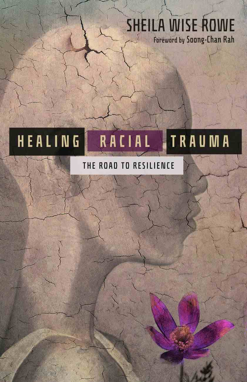 Healing Racial Trauma: The Road to Resilience Paperback