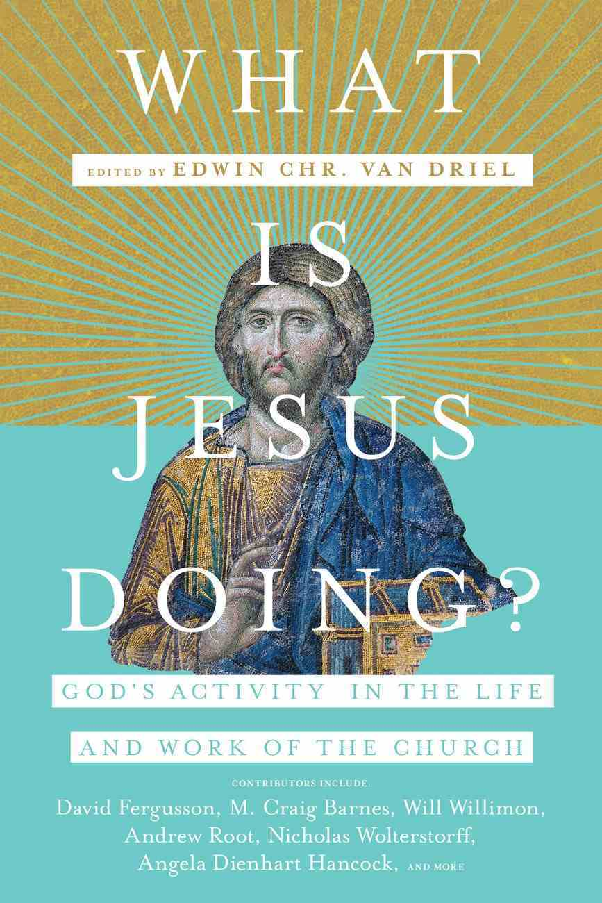 What is Jesus Doing?: God's Activity in the Life and Work of the Church Paperback