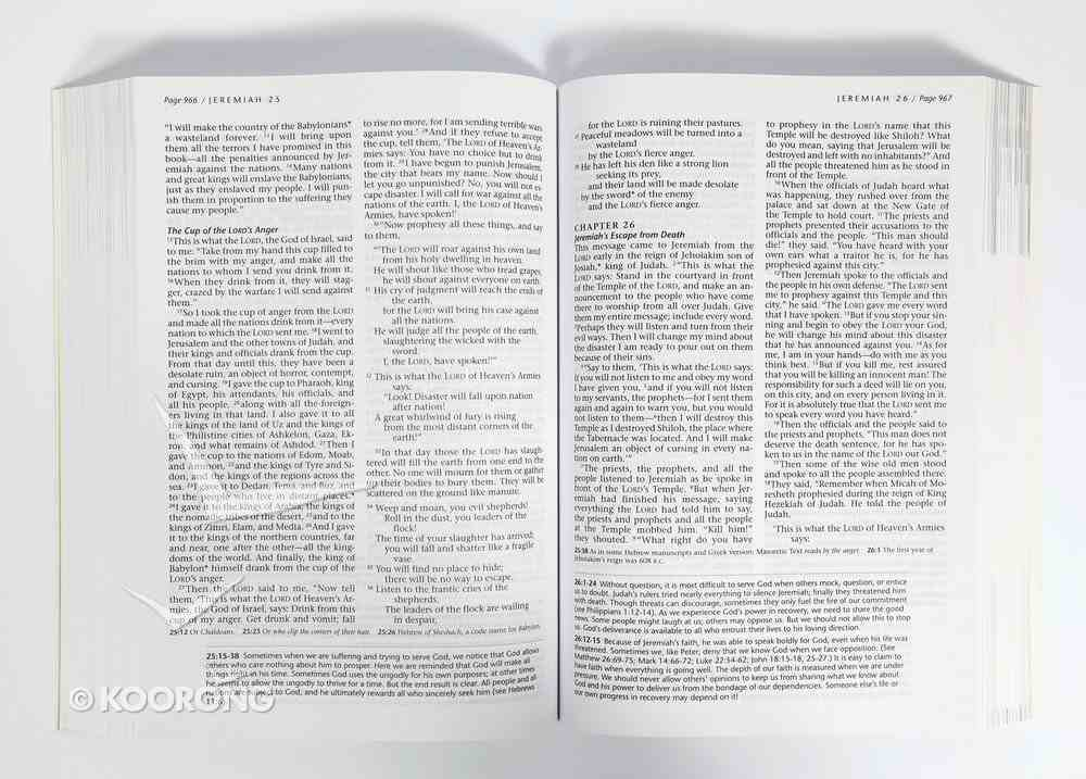 NLT Life Recovery Bible (Black Letter Edition) Paperback
