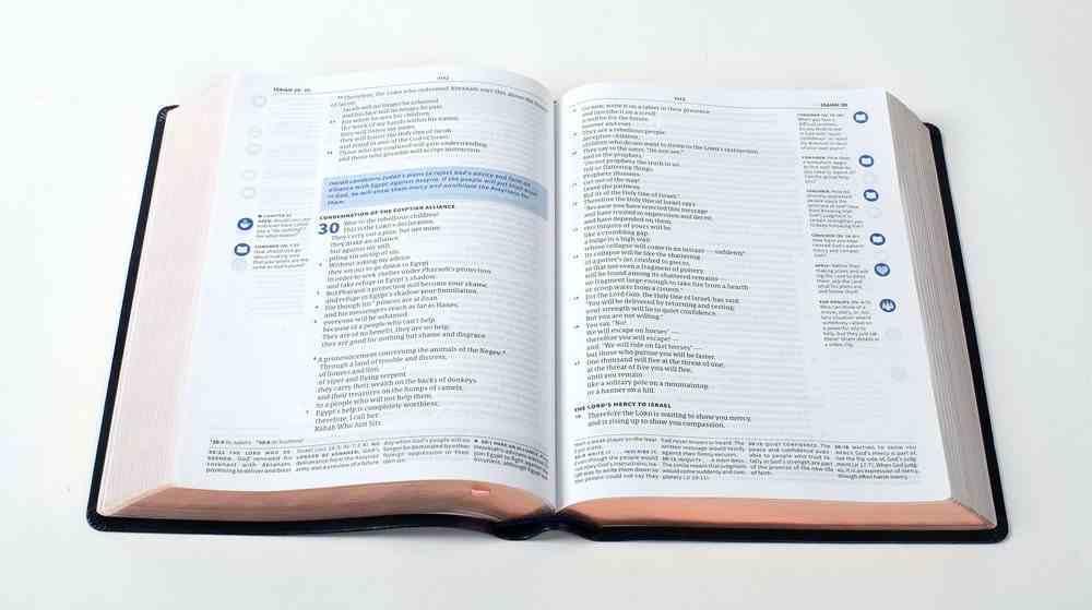 CSB Ancient Faith Study Bible Tan (Black Letter Edition) Imitation Leather
