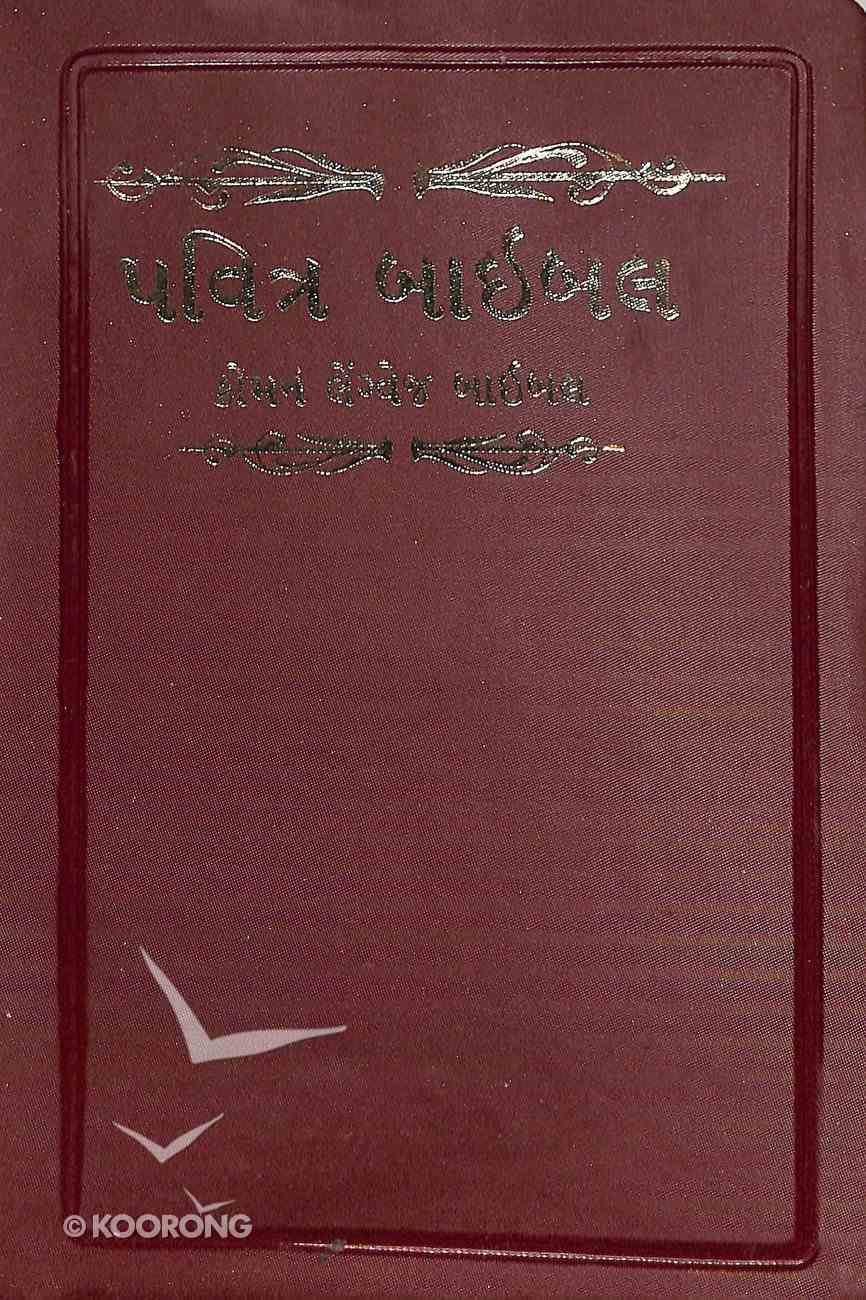 Gujarati Indian Bible Vinyl