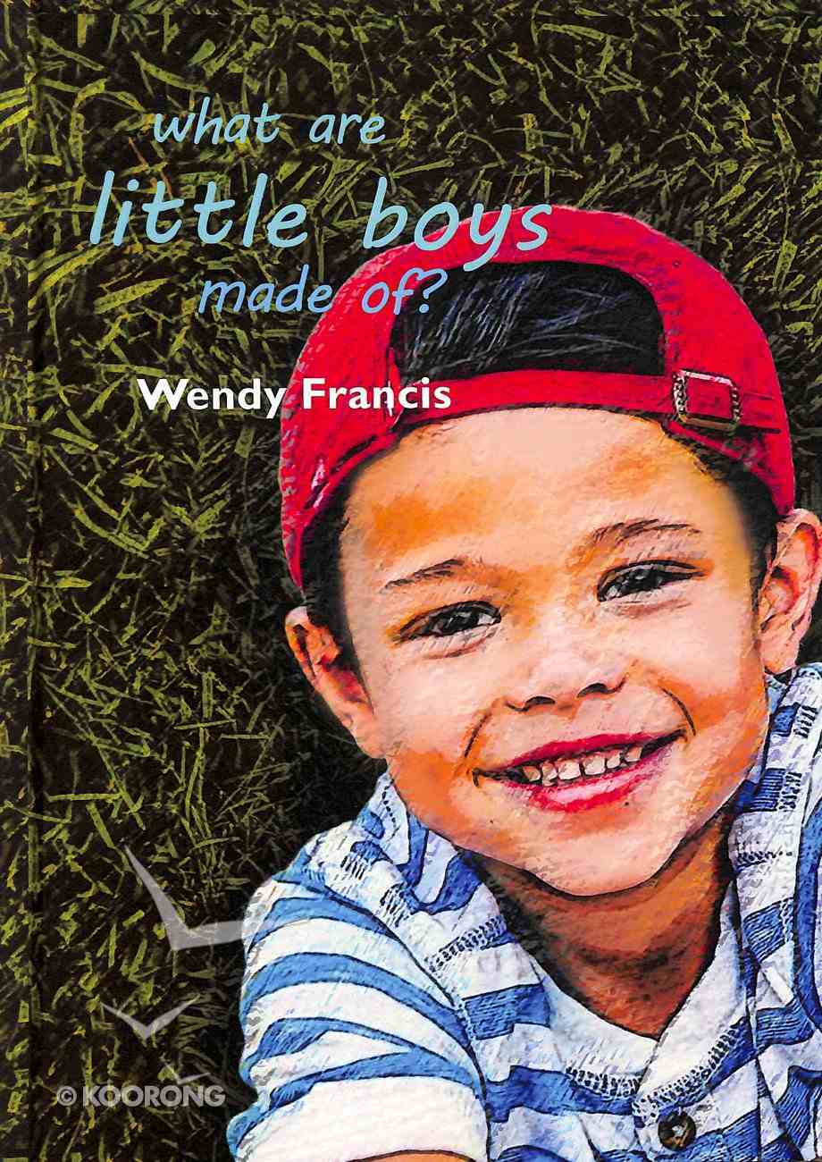 What Are Little Boys Made Of? Hardback