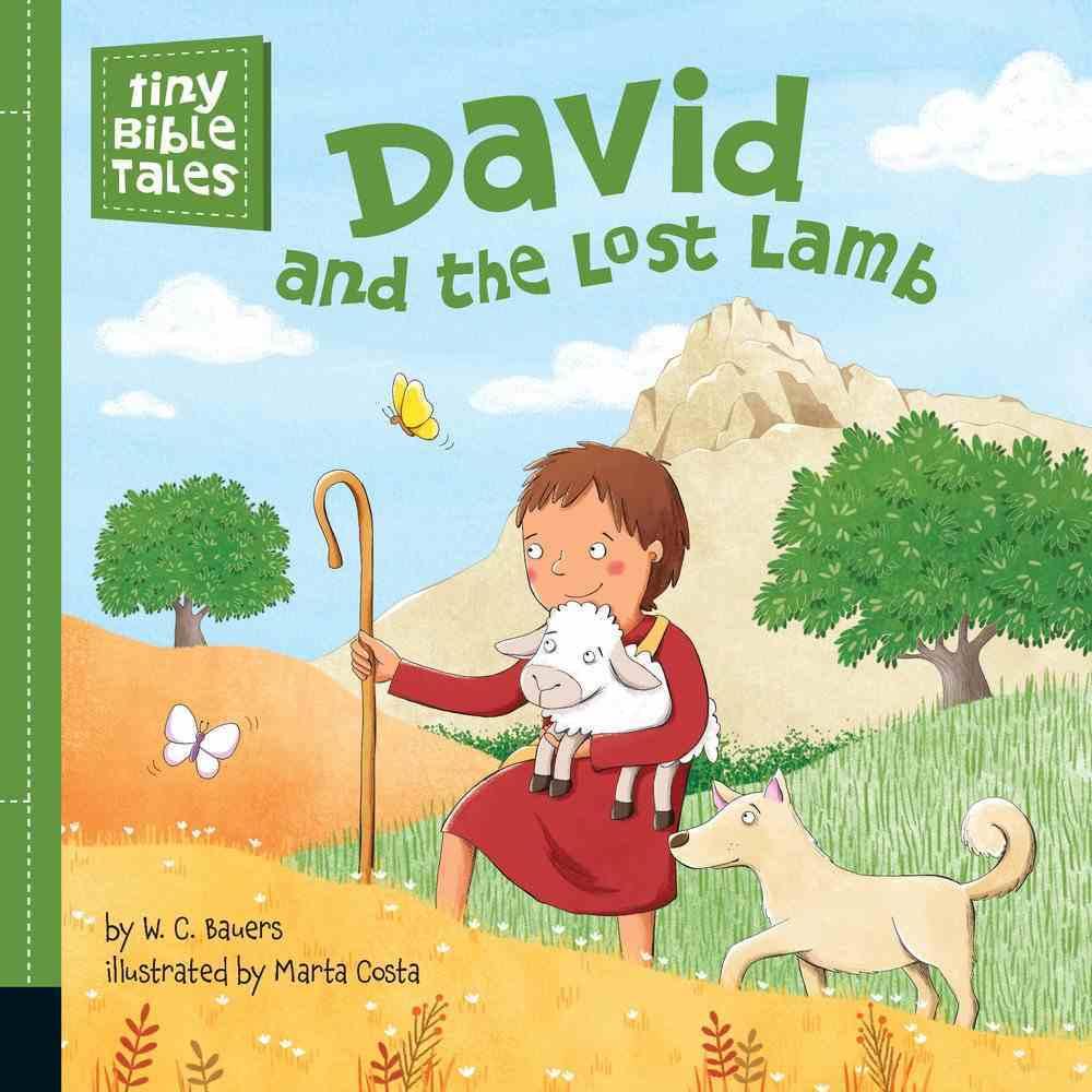 David and the Lost Lamb (Tiny Bible Tales Series) Board Book