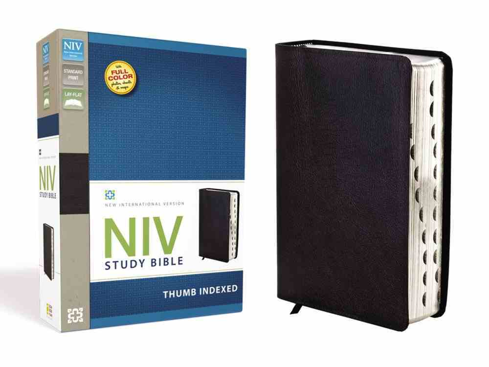 NIV Study Bible Black Indexed (Red Letter Edition) Genuine Leather
