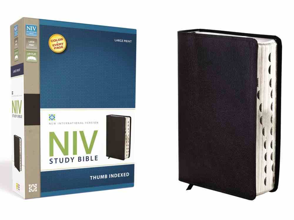 NIV Study Bible Large Print Black Indexed (Red Letter Edition) Bonded Leather