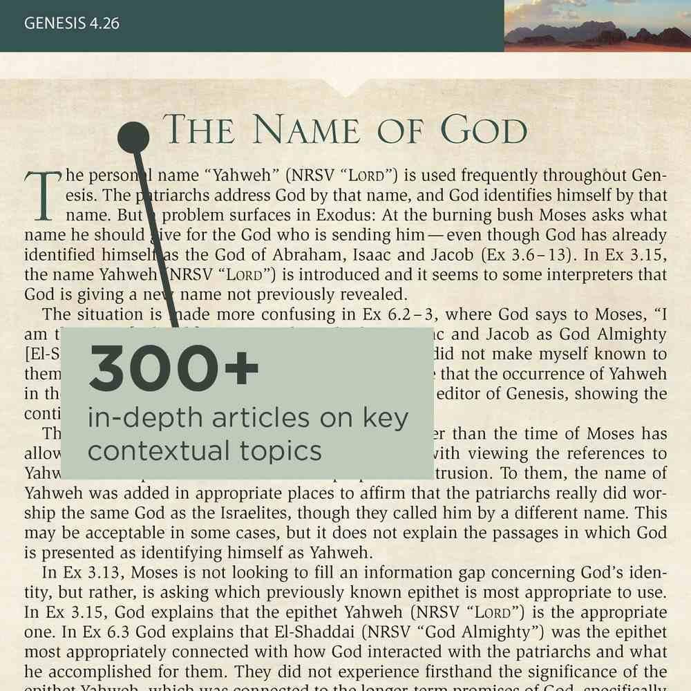 NRSV Cultural Backgrounds Study Bible Hardback