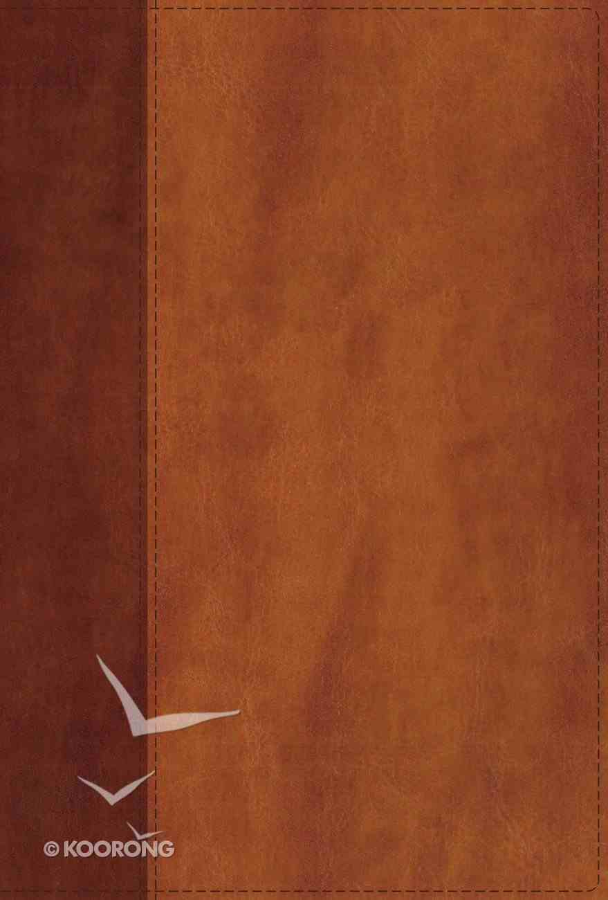 NIV Giant Print Compact Bible Brown (Red Letter Edition) Premium Imitation Leather