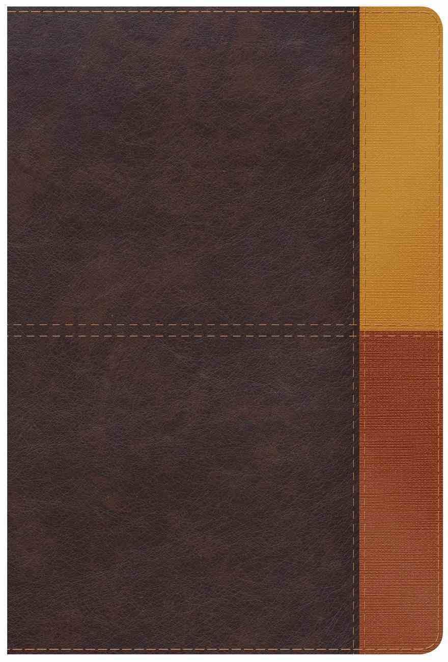 Rvr 1960 Biblia De Estudio Arco Iris Gris Pizarra/Oliva Imitation Leather