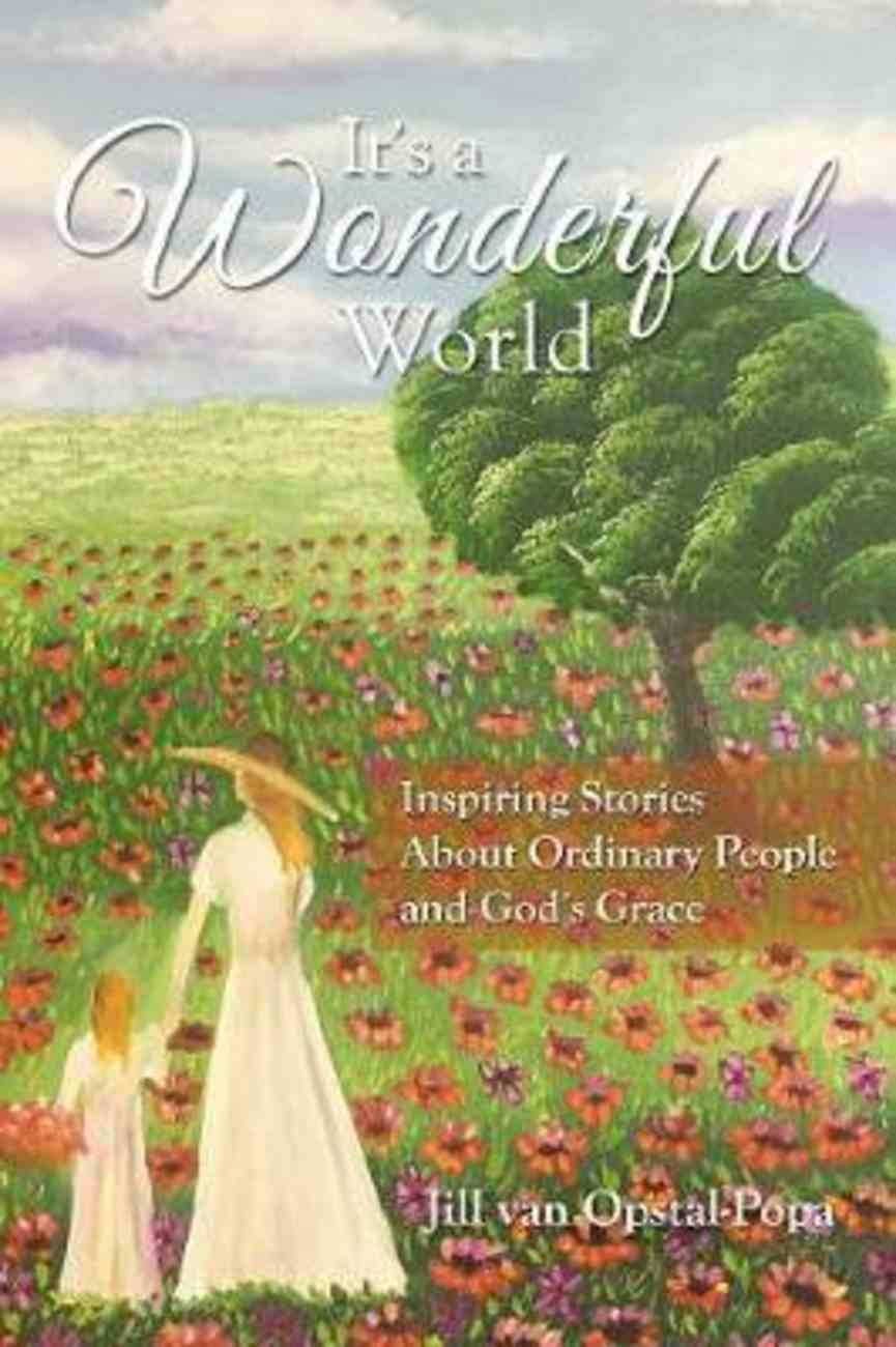 It's a Wonderful World: Inspiring Stories About Ordinary People and God's Grace Paperback