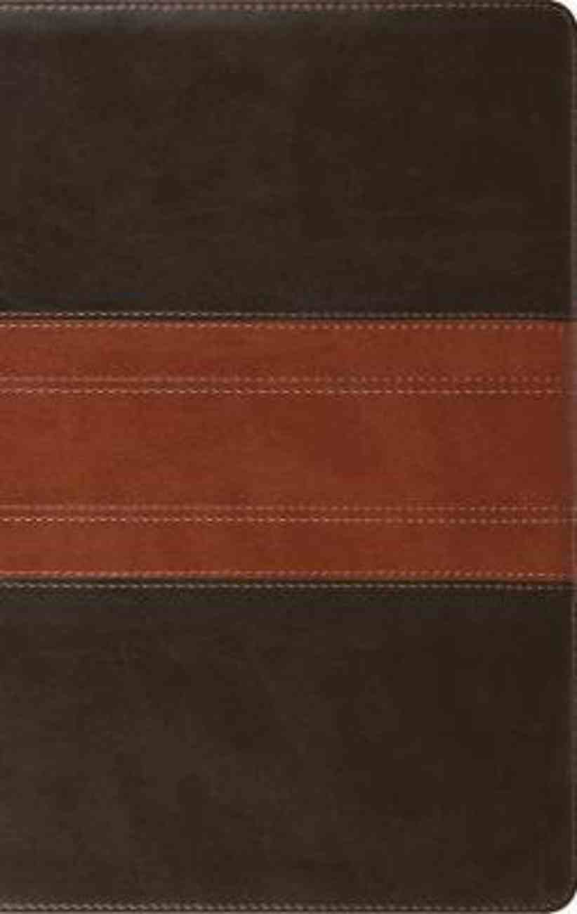 ESV Large Print Personal Size Bible Forest/Tan Trail Design (Red Letter Edition) Imitation Leather