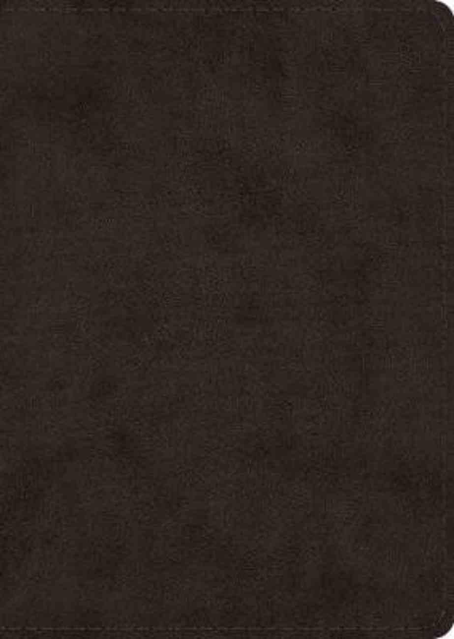 ESV Study Bible Large Print Black Imitation Leather