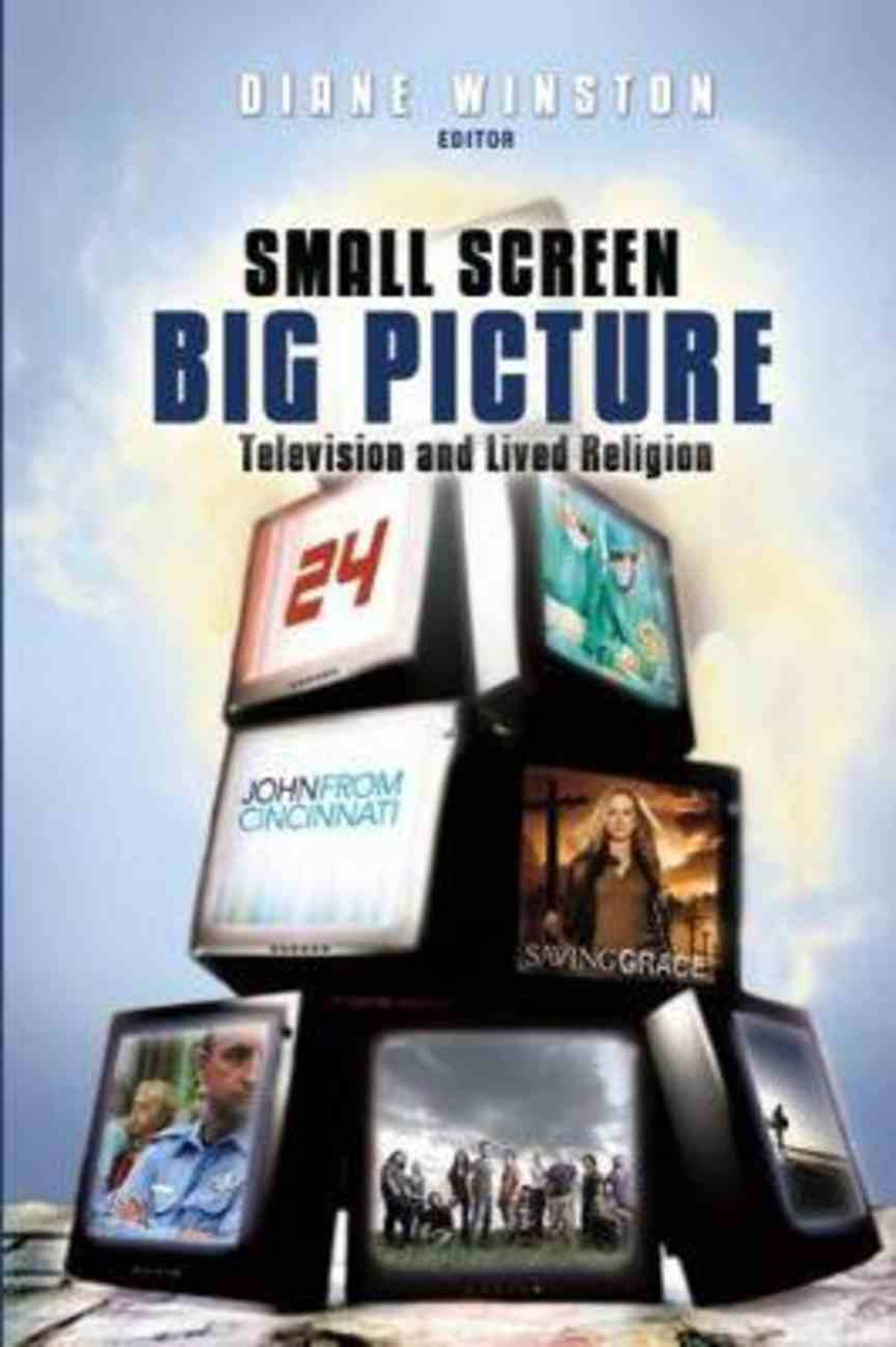 Small Screen, Big Picture Paperback