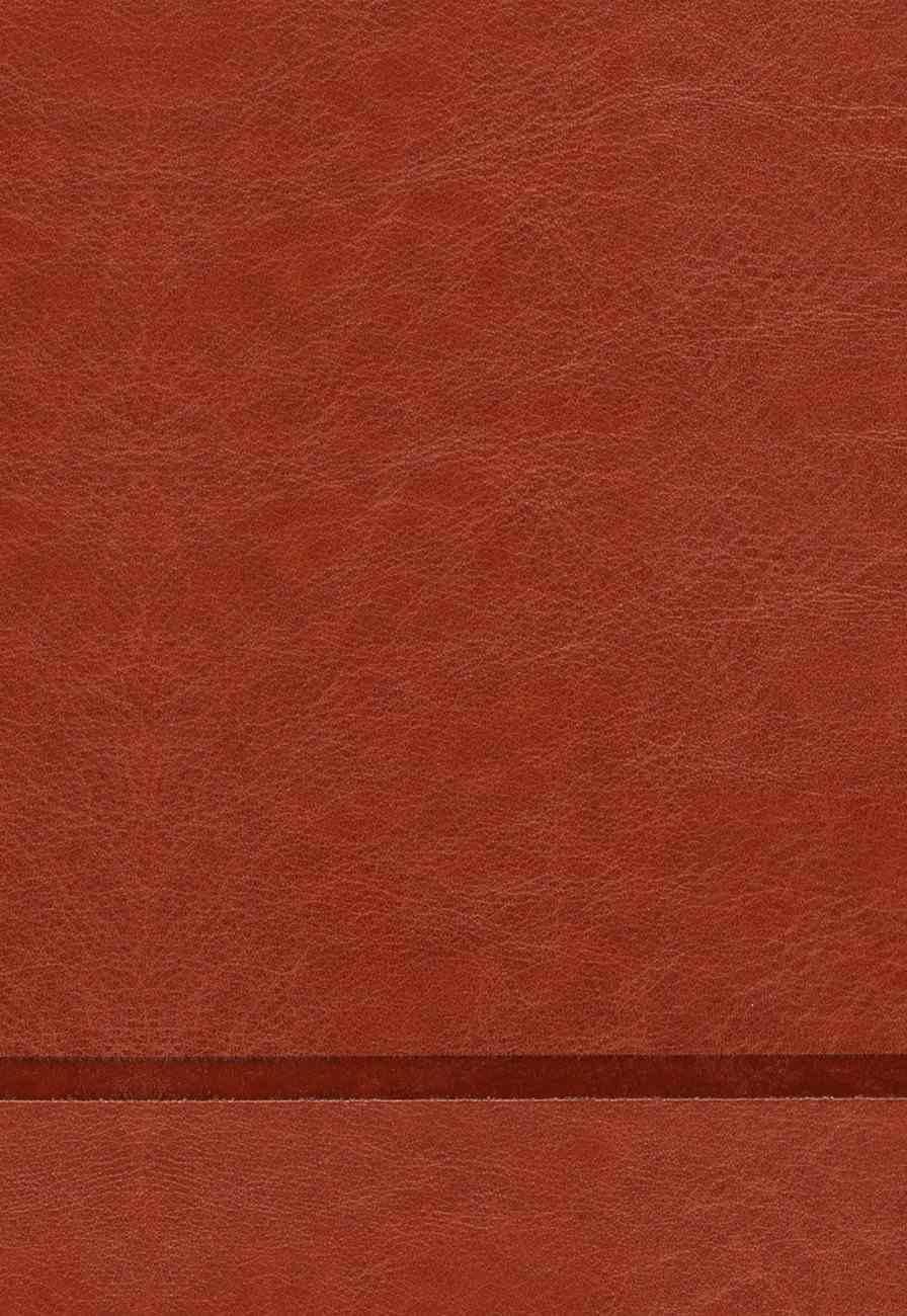 Elegidos, Los: 40 Dias Con Jesus (The Chosen 40 Days With Jesus- Book 1) (#01) Imitation Leather