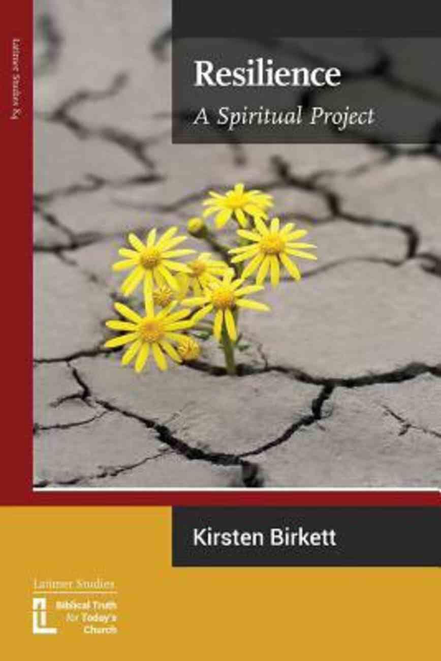 Resilience: A Spiritual Project Paperback
