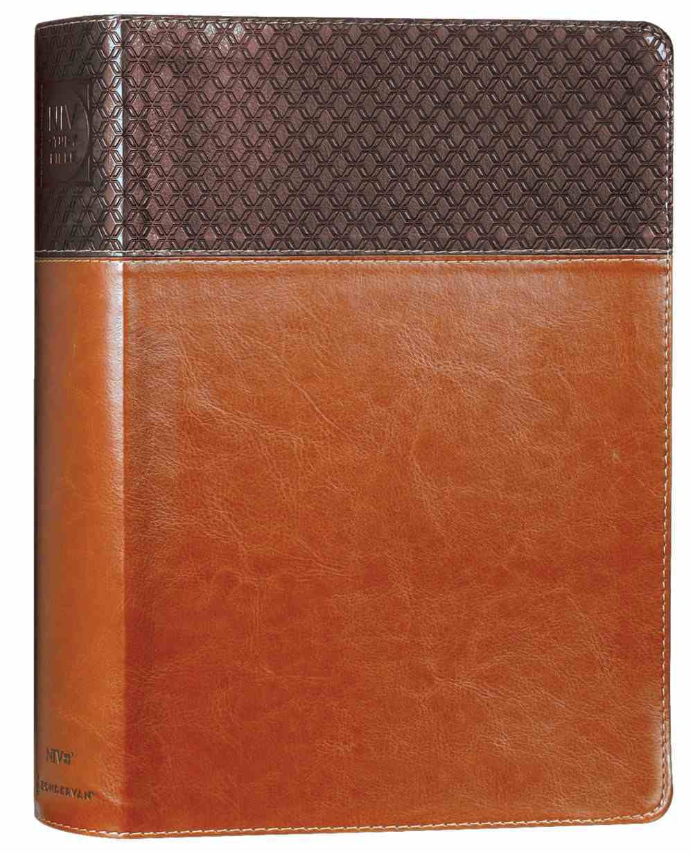 NIV Study Bible Large Print Brown (Red Letter Edition) Fully Revised Edition (2020) Premium Imitation Leather