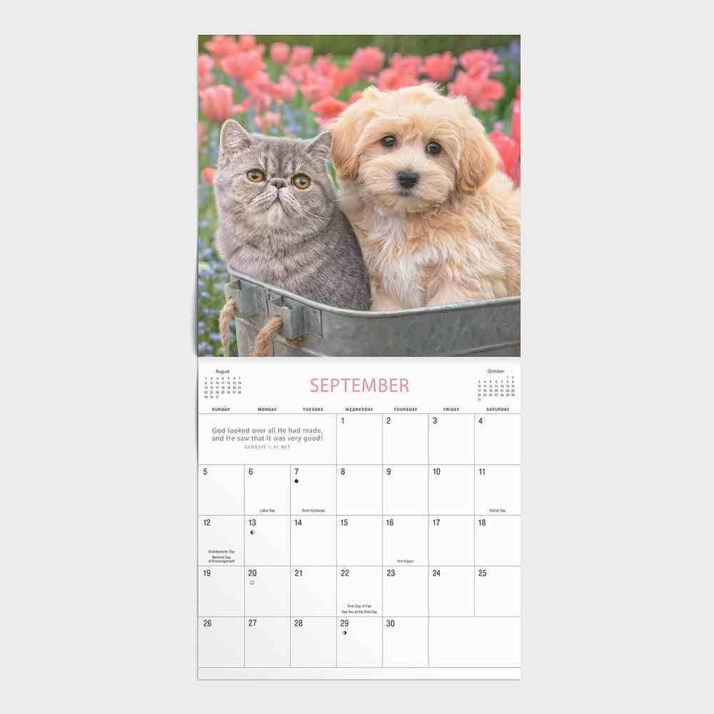2021 Standard Wall Calendar: Whiskers & Paws Calendar