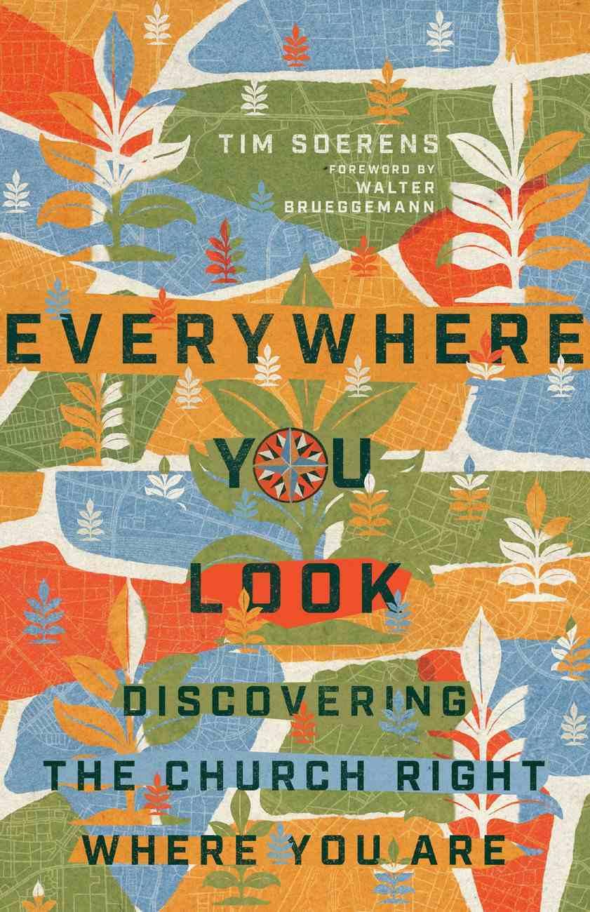 Everywhere You Look eBook
