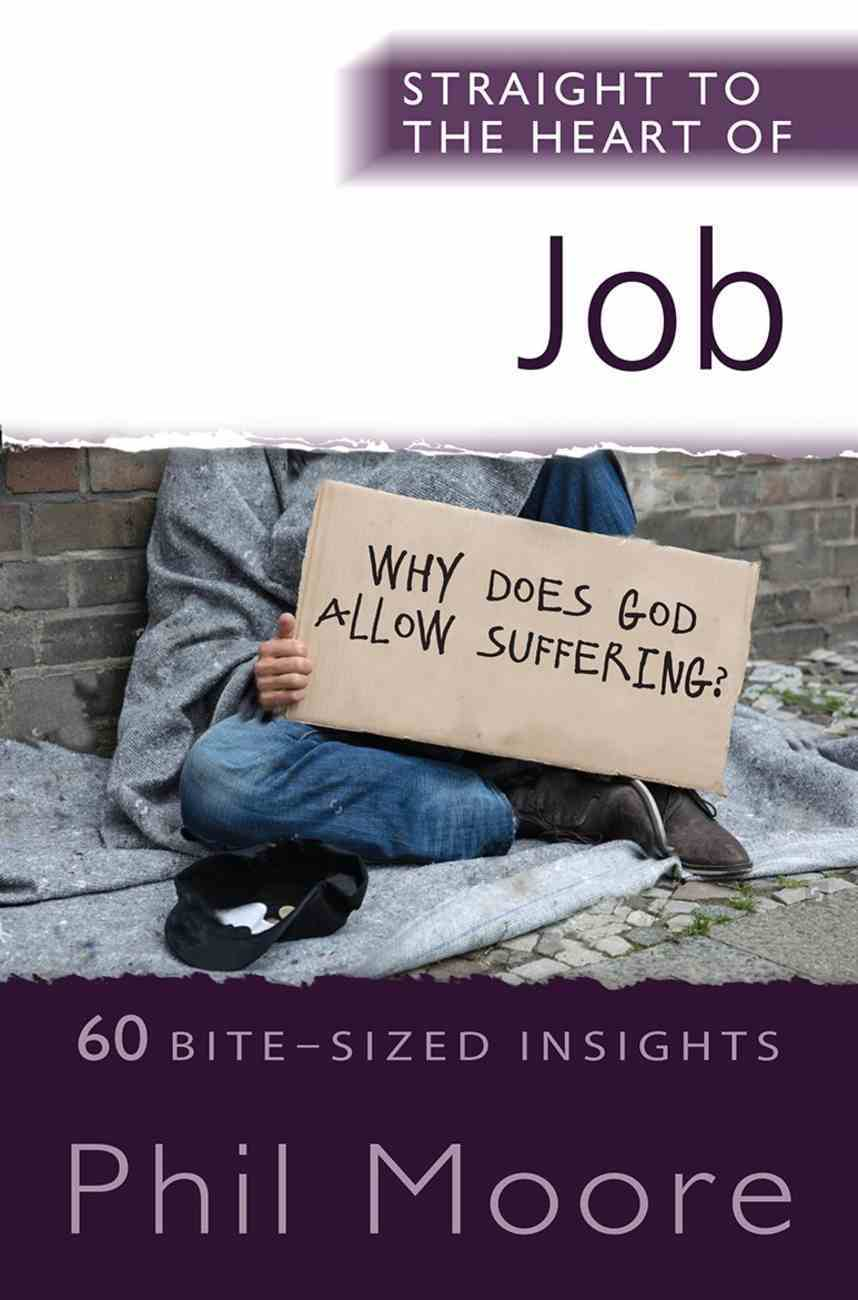Job: 60 Bite-Sized Insights (Straight To The Heart Of Series) Paperback