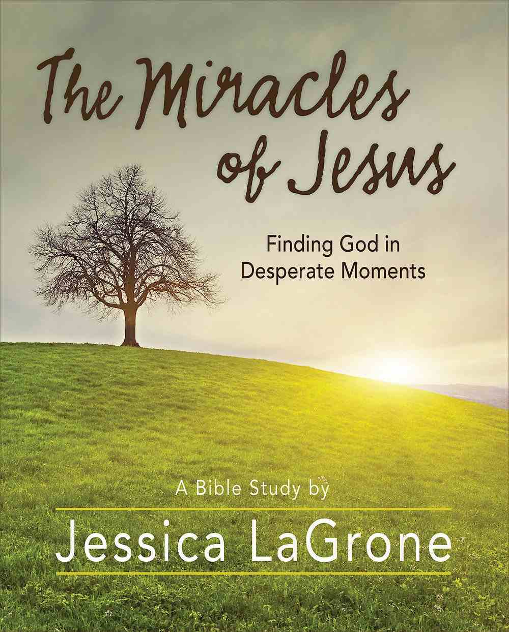 Miracles of Jesus, the - Women's Bible Study: Finding God in Desperate Moments (Participant Workbook) eBook