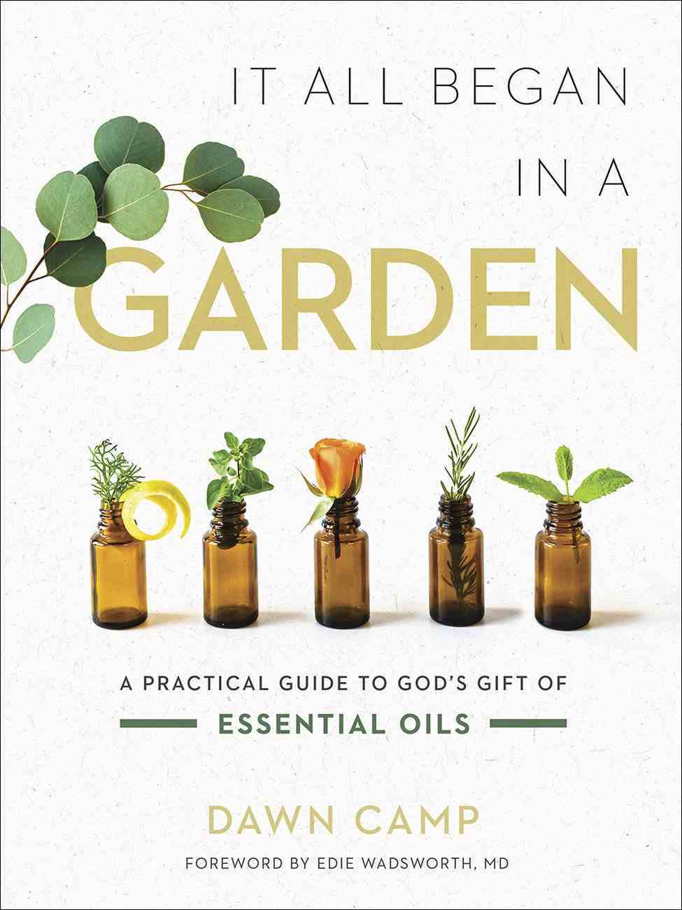 It All Began in a Garden: A Practical Guide to God's Gift of Essential Oils Hardback