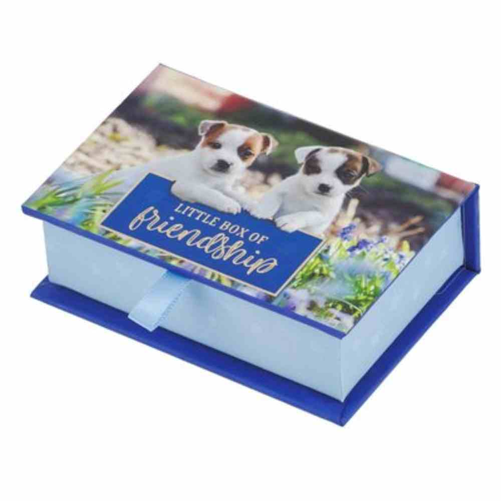 Box of Blessings: Little Box of Friendship, Puppies and Kittens Box