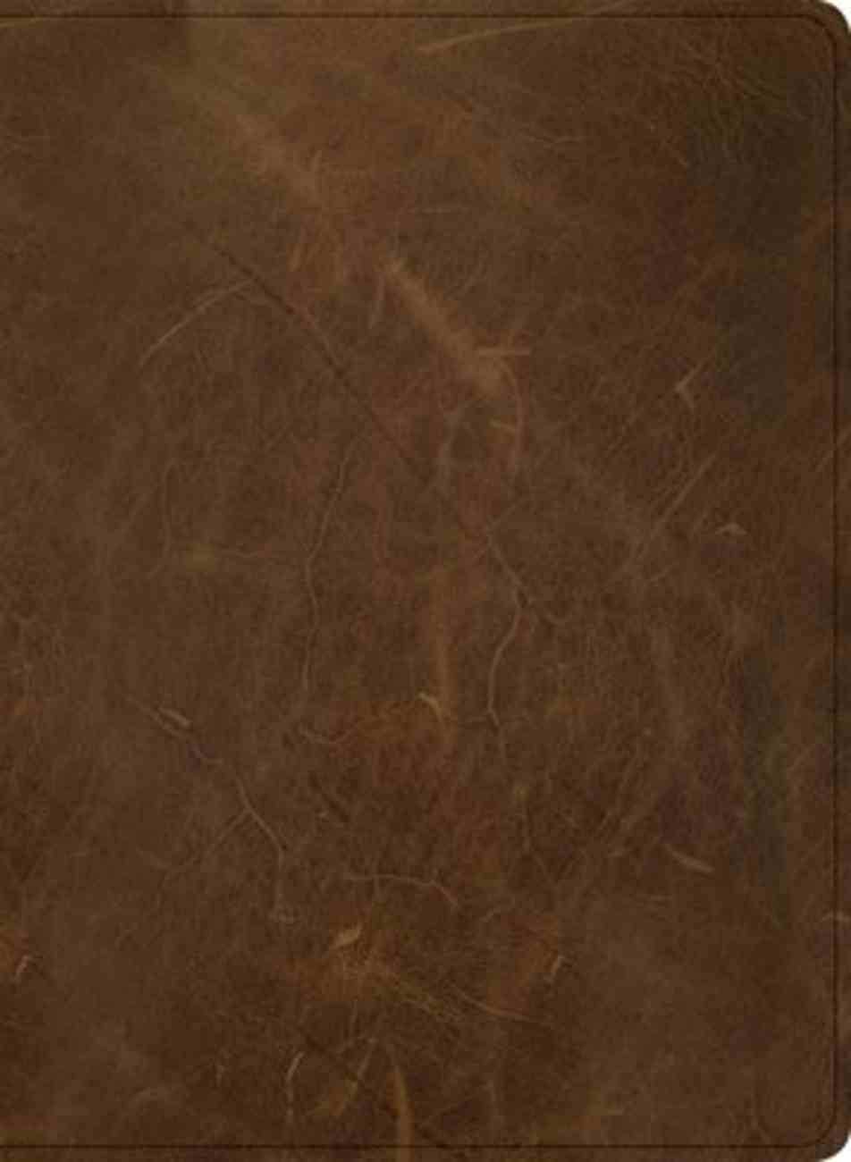 CSB Men of Character Bible Brown Indexed (Black Letter Edition) Genuine Leather