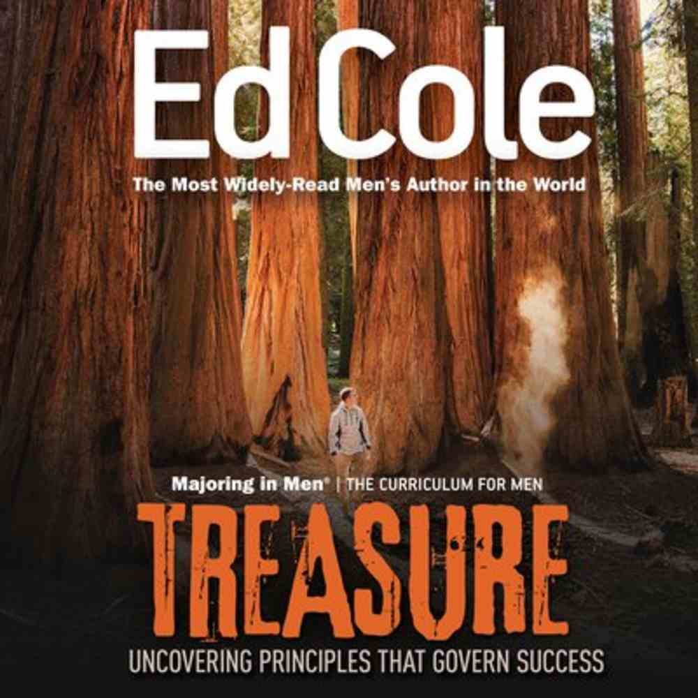 Treasure: Uncovering Principles That Govern Success (Workbook) Paperback