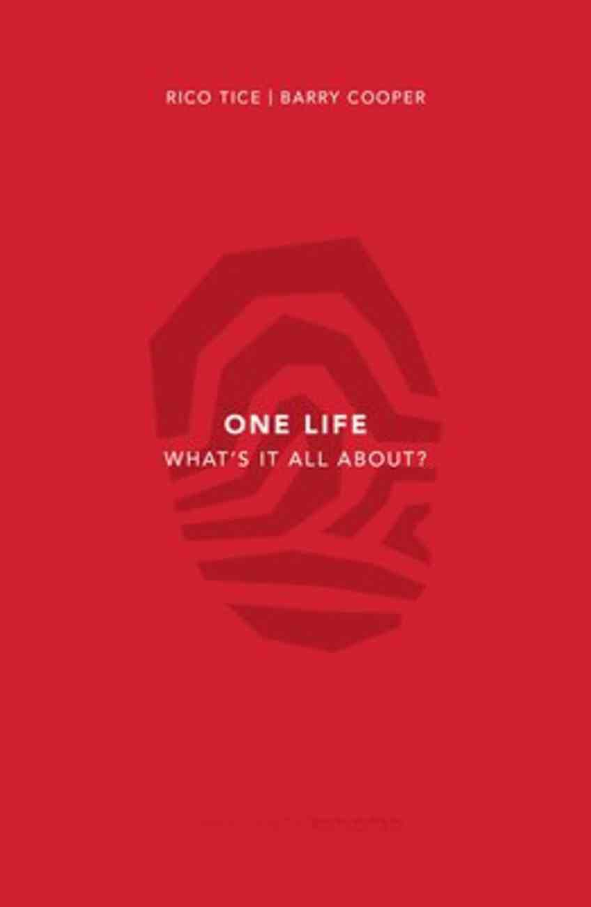 One Life: What's It All About (3rd Edition) Paperback