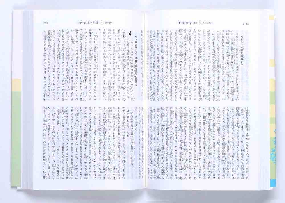 Japanese New Interconfessional New Testament Paperback