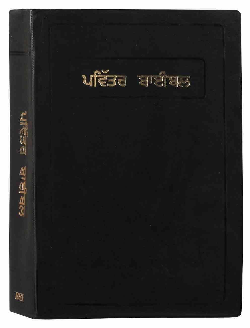 Punjabi Bible Large Print Vinyl