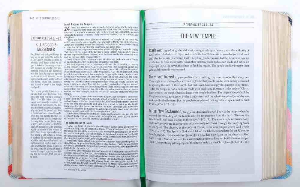 NIV the Jesus Bible Multi-Color Teal Premium Imitation Leather