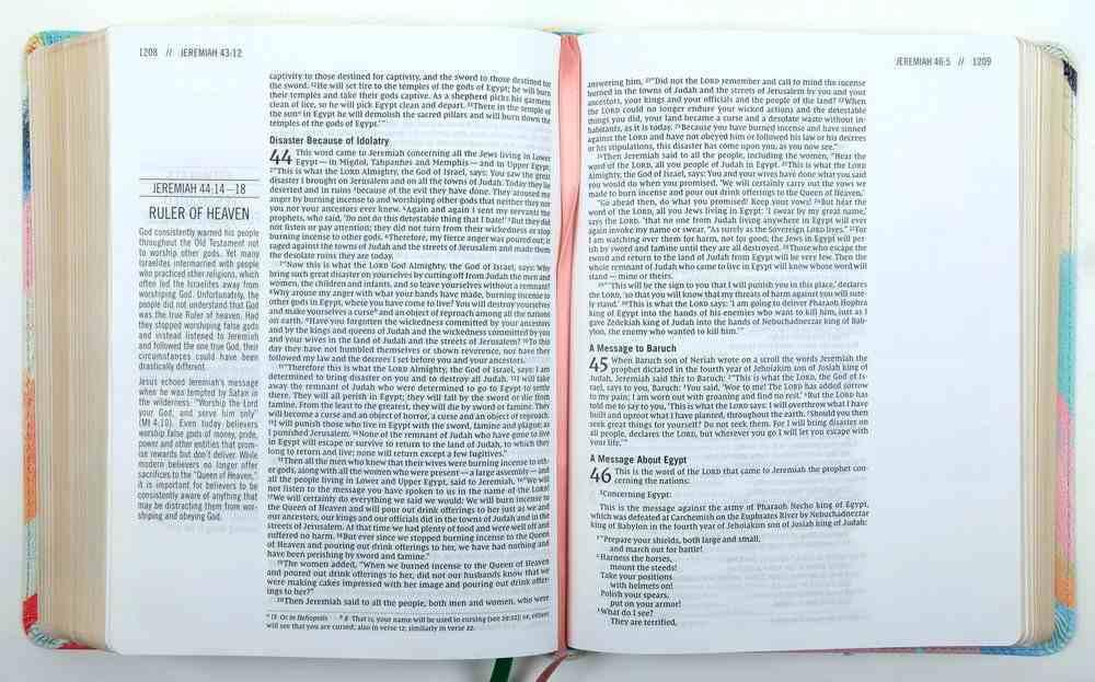 NIV the Jesus Bible Multi-Color Teal Premium Imitation Leather