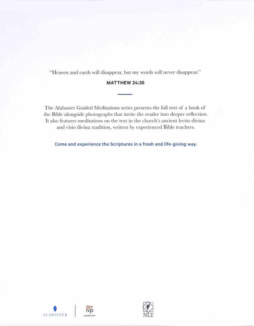 NLT Alabaster Matthew: Read, Reflect, Respond, Rest (Alabaster Guided Meditations Series) Paperback