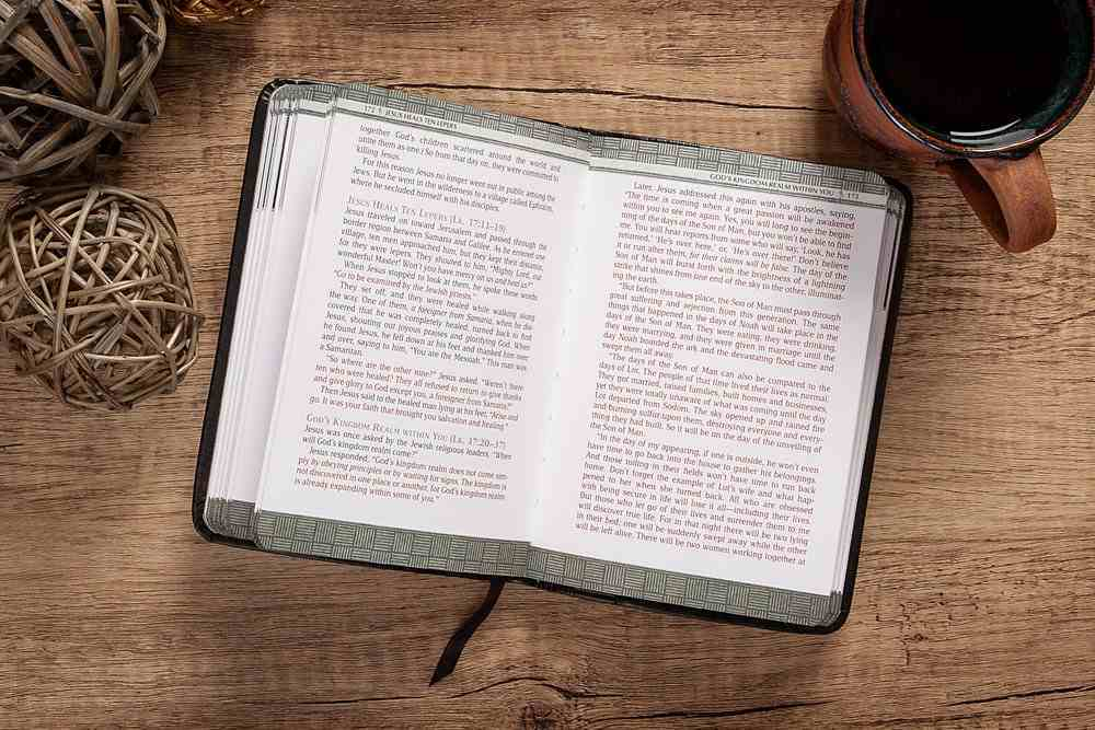 TPT the Life of Jesus: Harmonized Gospels Reader's Edition Imitation Leather
