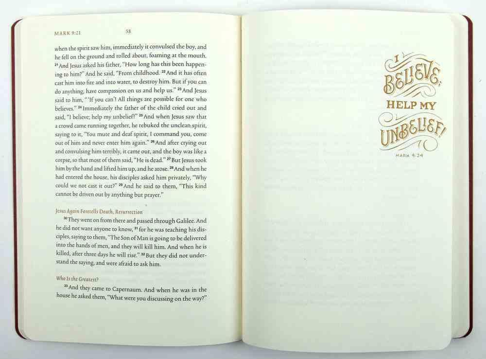 ESV Illuminated Scripture Journal Mark (Black Letter Edition) Paperback