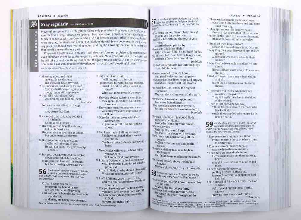 NLT New Believer's Bible: First Steps For New Christians (Black Letter Edition) Paperback