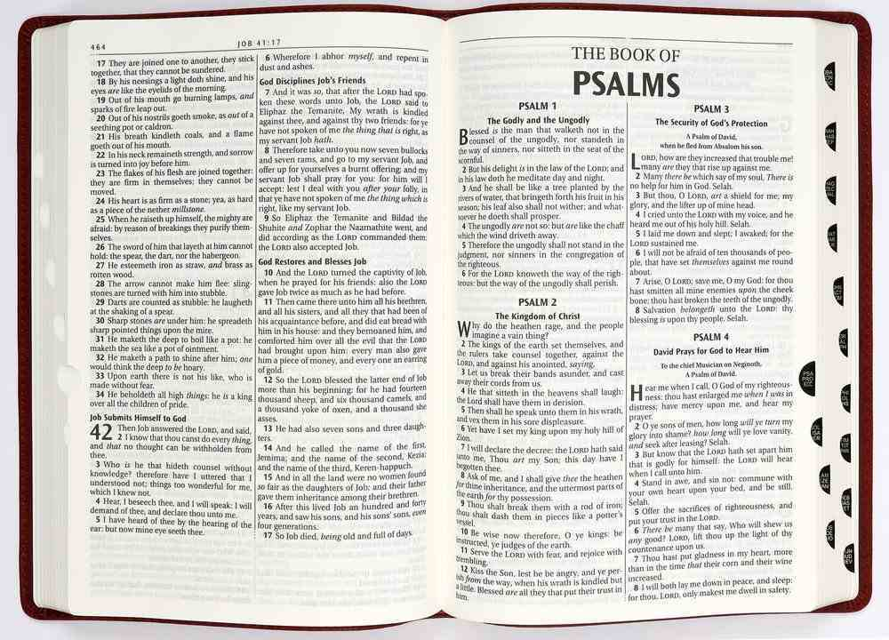 KJV Thinline Large Print Bible Indexed Burgundy (Red Letter Edition) Genuine Leather