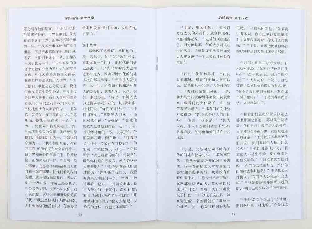Chinese Gospel According to John (Black Letter Edition) Paperback