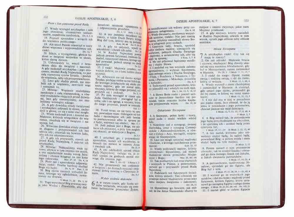 Polish New Testament With Psalms Traditional Translation Hardback