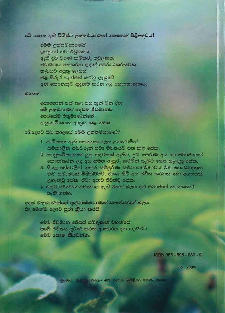 Sinhala New Testment Modern Translation (Sri Lanka) Paperback