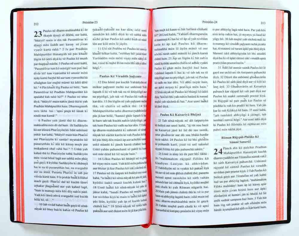 Naya Niyam Roman Script Grey (Hindi Common Language New Testament) Paperback