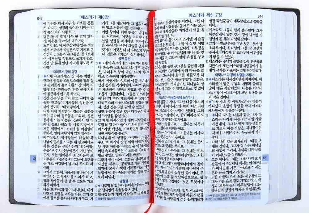 Korean Rnksv Bible Vinyl