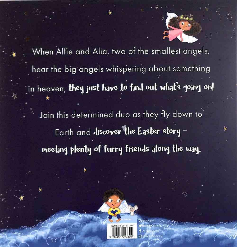 Heaven's Big Secret Paperback