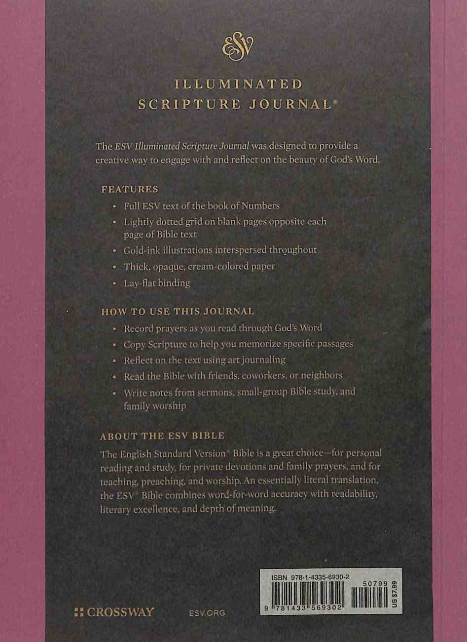 ESV Illuminated Scripture Journal Numbers (Black Letter Edition) Paperback