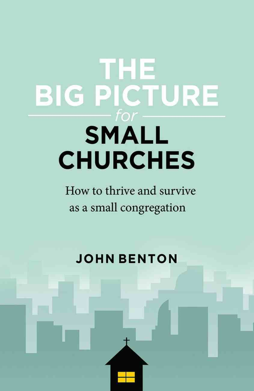 The Big Picture For Small Churches Paperback